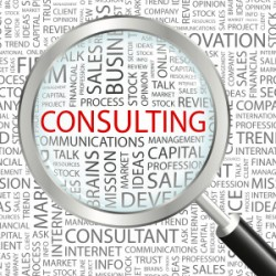 Business Consulting 250x250